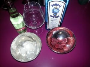 gin tonic (11)