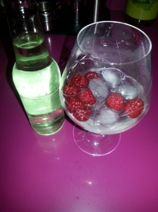 gin tonic (3)