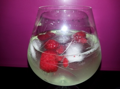 gin tonic (9)